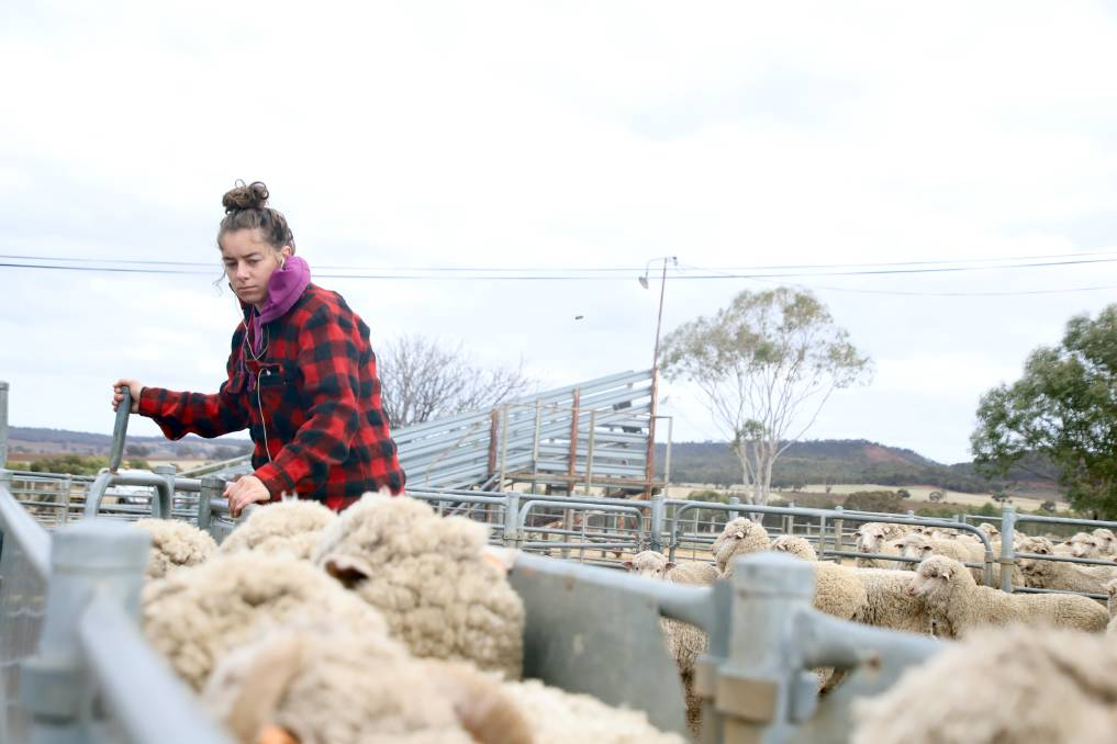 With 16,300 Instagram followers and 227,000 following her on TikTok, Mandy Matthews uses her social media presence to help advocate for the agricultural industry.